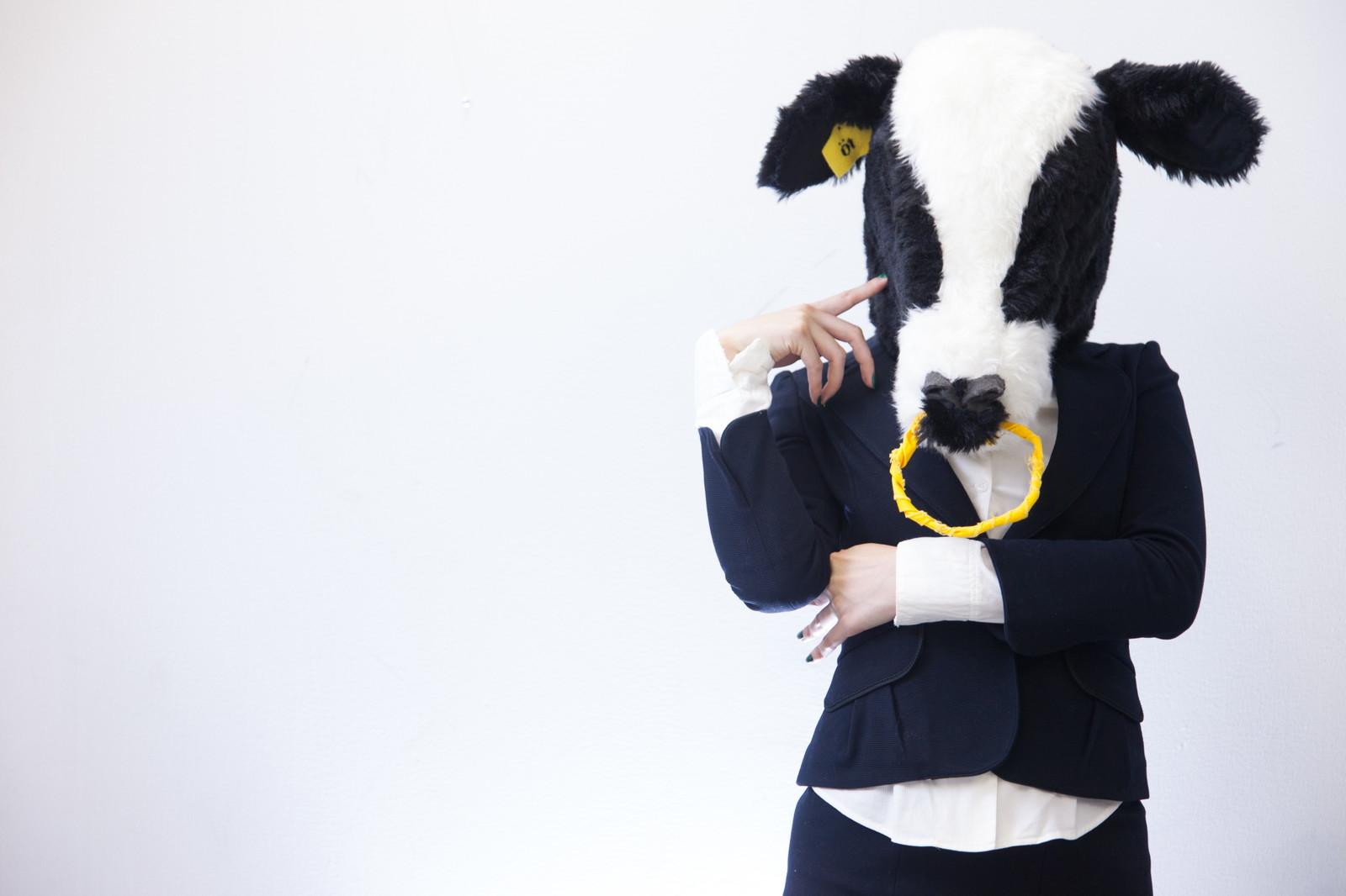 考える牛の画像
